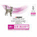 PURINA PRO PLAN VETERINARY DIETS umido gatto UR Urinary St/Ox con salmone