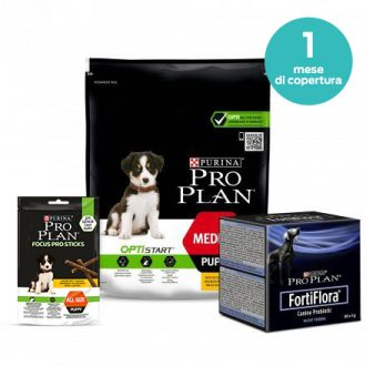 Kit Pro Plan Puppy
